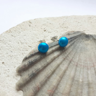 5mm Turquoise Freshwater Pearl Stud Earrings