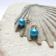8mm Turquoise Freshwater Pearl Stud Earrings