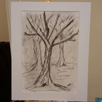 Into the Woods original charcoal drawing mounted ready for framing