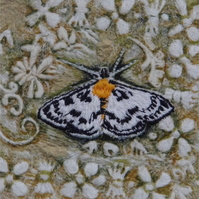 Magpie Moth - Original Embroidery Collage