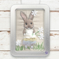 Rabbit, dressed-up rabbit picture, framed in a tin