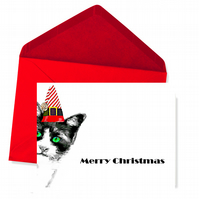 Is it Christmas Yet? - Cat Peeping, Christmas Card