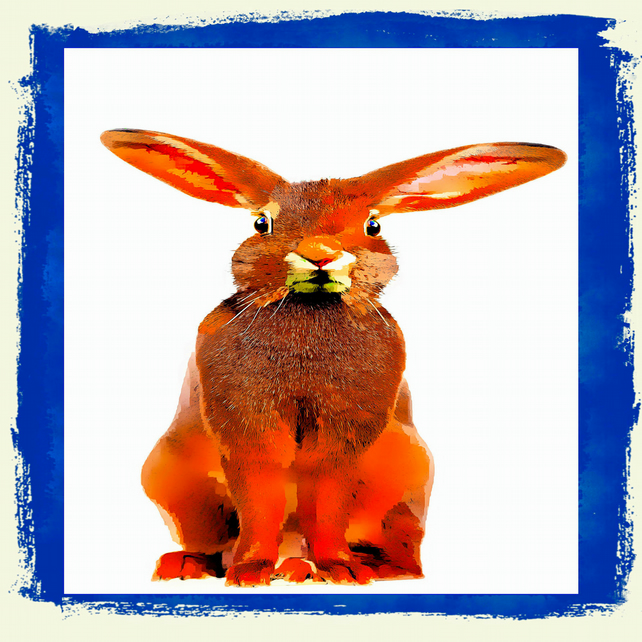 Floppy Ears, Hare Coaster; High Gloss Finish; Wonderful Colours