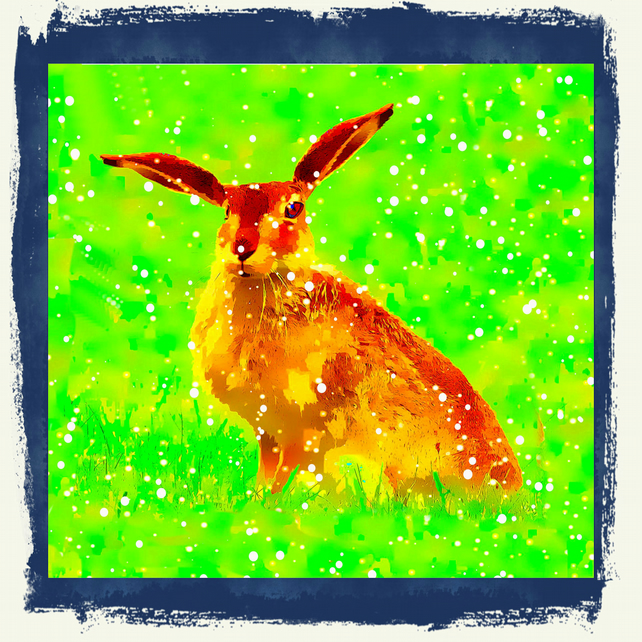 Hare in Grass and Snow Coaster; High Gloss Finish; Wonderful Colour