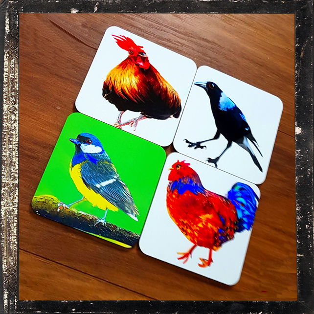 Four Bird Coasters; High Gloss Finish; Wonderful Colours