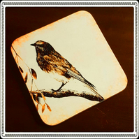 Christmas Robin on a Branch Coaster; High Gloss Finish