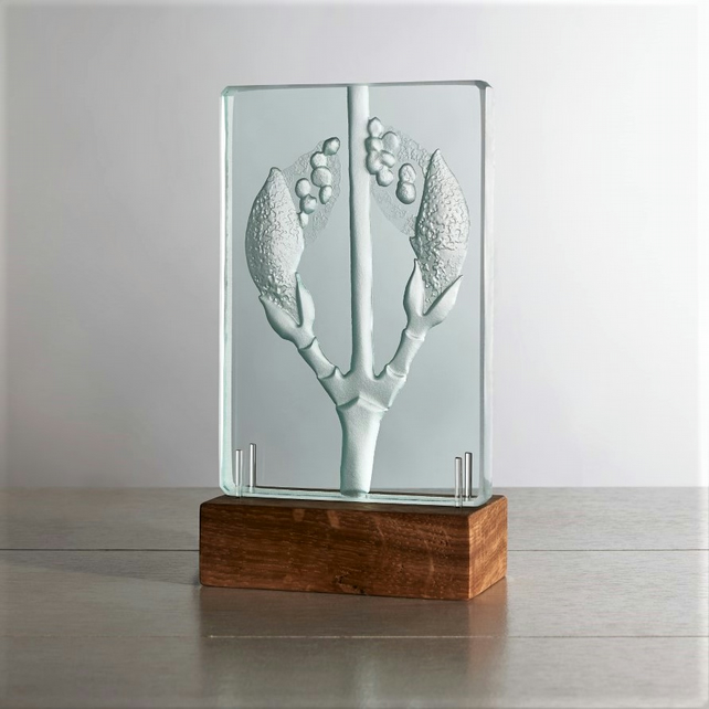 Acer Rufinerve. Engraved Sandblasted Glass Table Light Sculpture By Tim Carter