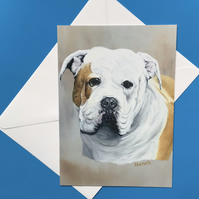 Hench the bulldog card