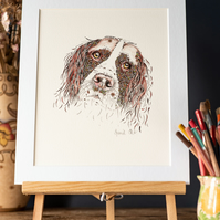 "Spaniel Art Print  10 x 12"" mounted, signed and ready to frame"