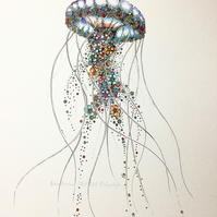 Jelly  Fish a4 signed, mounted print (pre order)