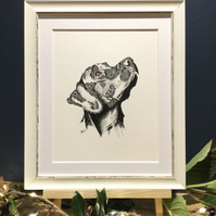 Framed Black Labrador Art Print