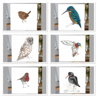 Mixed pack of British  bird greeting cards x 6