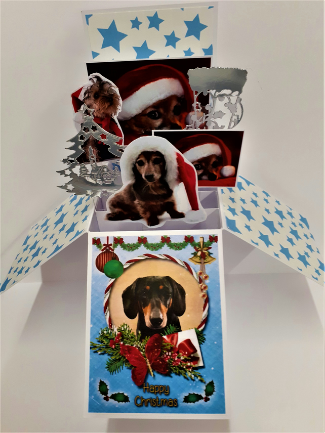 Christmas Card with Dogs
