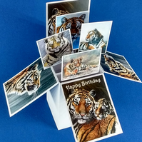 Birthday Card with Tigers