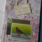 HANDMADE A5 Birthday Card featuring a chaffinch design - Design 8