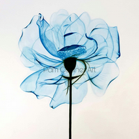 Flower Art  Flower Drawing Turquoise X-Ray Flower Drawing