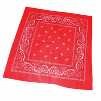 PRETTY DISTURBIA RED PAISLEY BAND AND HEAD SCARF