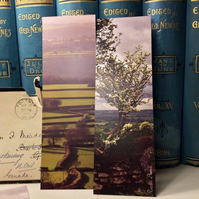 Dartmoor bookmarks set of three