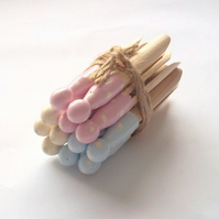 Dotty Dolly Pegs Pastel Mix