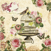 2 x Paper Napkins for Decoupage, Serviette, 3ply, 33cm, Birds,