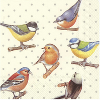 2 x Paper Napkins for Decoupage, Serviette, 3ply, 33cm, Birds