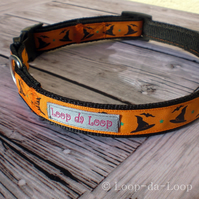 Halloween witches hats dog collar