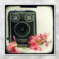 Brownie: pink floral wall art for camera lovers. 5x5 inch signed photo print.