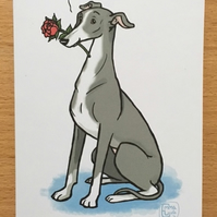 Greyhound Rose Card