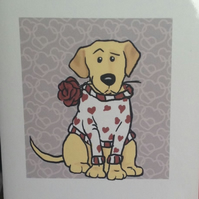 Yellow Labrador Rose card