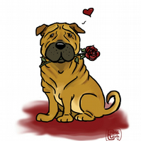 Shar Pei Rose card