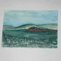 Aceo- Irish salt marsh