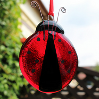 Fused glass Ladybird