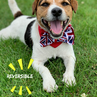 Union jack dog bandana - British flag dog bow tie