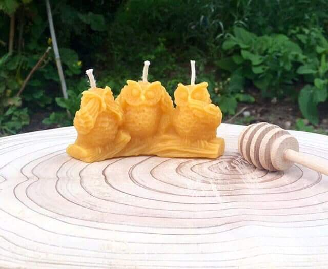 3 owls beeswax candle