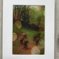Fairies Mounted Photo