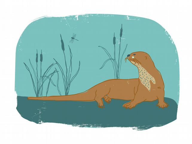 The Otter and Dragonfly - A4 Print
