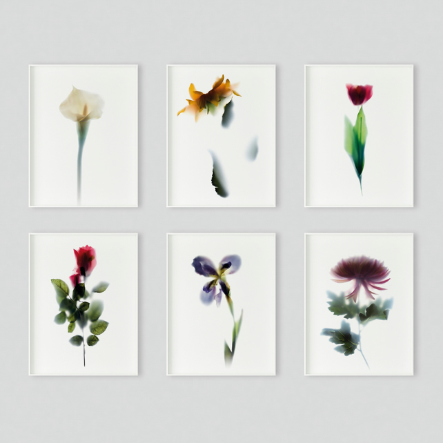 Set of 6 mini floral prints A6 size postcard, with elegant flower photography