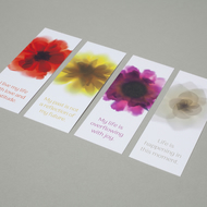 Pack of 4 bookmarks with flower images and inspirational motivational messages