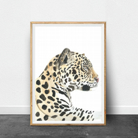 Leopard Illustration, Leopard print