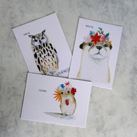 British Wildlife Postcard set