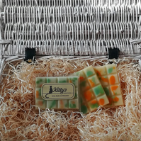 Lime, Basil and Mandarin snap bar cubes