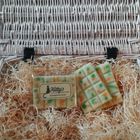 Lemongrass and Ginger snap bar cubes