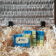 Blueberry and Vanilla snap bar cubes