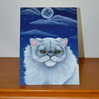 White Persian Cat Greetings Card