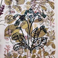 Vintage Native Tree Species Fauna Printed with Green Cowslip (Primula) Linocut