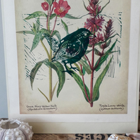 Pretty Vintage Botanical Print of Meadow Herbs with little Green Wren atop