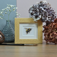 Framed Bumble Bee - Mini Bee art print from watercolour painting