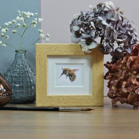 Framed Honey Bee - Mini Bee art print from watercolour painting