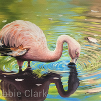 Flamingo in the Water - Giclee Art Print