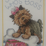 Handmade Completed Cross Stitch 'Show Them Who's Boss'